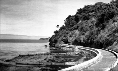 Seawall at Mentone and Beaumaris cliffs, c1940