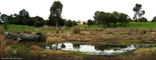 Sir William Fry Reserve, Swamp Pool [picture].